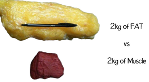 fett i kroppen